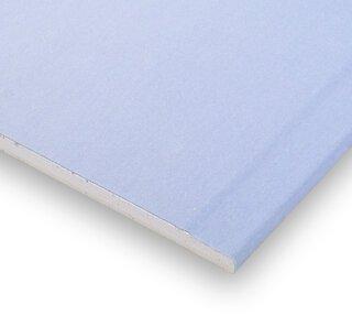 Rigips Die Blaue RFI 12,5